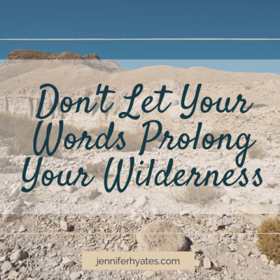 Don't Let Your Words Prolong Your Wilderness
