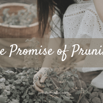 The Promise of Pruning